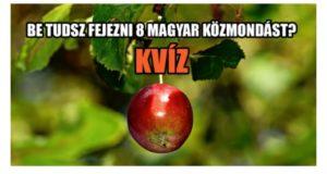 Be tudsz fejezni 8 magyar közmondást? KVÍZ
